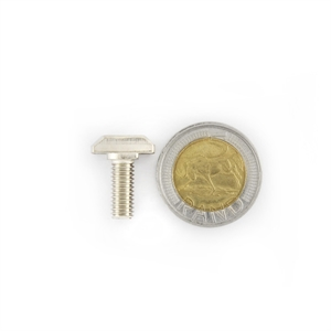 Picture of T-Bolt Zinc Chromium Plated Steel